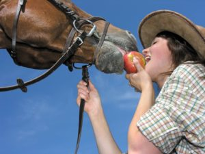 16050971 - young cowgirl and her friend eating an apple, low angle view